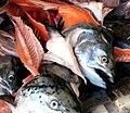 Fish Market in Chinatown (307633882).jpg