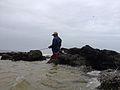 Fisherman catching fish in Vainguinim beach.jpg