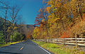 Flickr - Nicholas T - Quiet Road.jpg