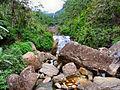 Flickr - ronsaunders47 - SRI LANKAN WATERFALLS. 4.jpg