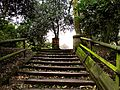 Flickr - ronsaunders47 - UP THE STEPS TO THE CHURCH..jpg