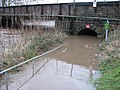 Flooded Pedestrian Subway - geograph.org.uk - 314851.jpg