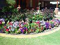 Flower garden (1).jpg