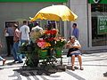 Flower seller at Rossio - Jul 2008.jpg