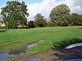 Footpath, Southwick - geograph.org.uk - 1577844.jpg
