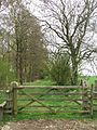Footpath - geograph.org.uk - 173024.jpg