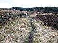 Footpath near Gallow Hill - geograph.org.uk - 1766497.jpg