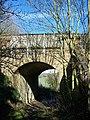 Footpath under Railbridge - geograph.org.uk - 1165491.jpg