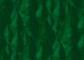 Forest para3 bottom (SuperTux).png