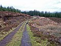 Forestry road, Greshornish Forest - geograph.org.uk - 1195923.jpg