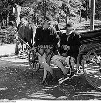 Fotothek df ps 0006311 Fuhrwerke ^ Pferdefuhrwerke ^ Kutschen ^ sonstige Kutsche.jpg