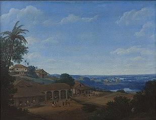 Landscape in Brazil with Sugar Plantation
