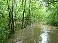 Freising Moosach Hochwasser 2013 8.JPG