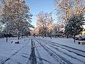 Fresh Snowfall (49787520502).jpg