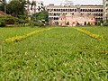From Grass view Saat Gambuj Masjid.jpg