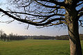 From under a cherry tree looking south, at the west of Wollaton Hall, Nottingham, England.jpg
