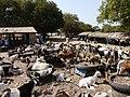 Gambia01SouthGambia062 (5380656260).jpg