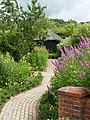 Garden - panoramio (26).jpg