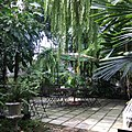Garden of The Museum of Floral Culture.jpg