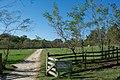 Gate to fruit garden - Mount Vernon.jpg