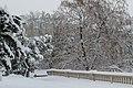 Geneve Sous la neige - 2013 - panoramio (40).jpg
