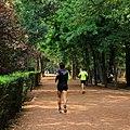 Gente corriendo - Viveros de Coyoacán.jpg
