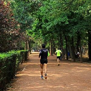 Viveros de Coyoacán - People jogging at Viveros.