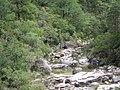 Gerês - panoramio (4).jpg