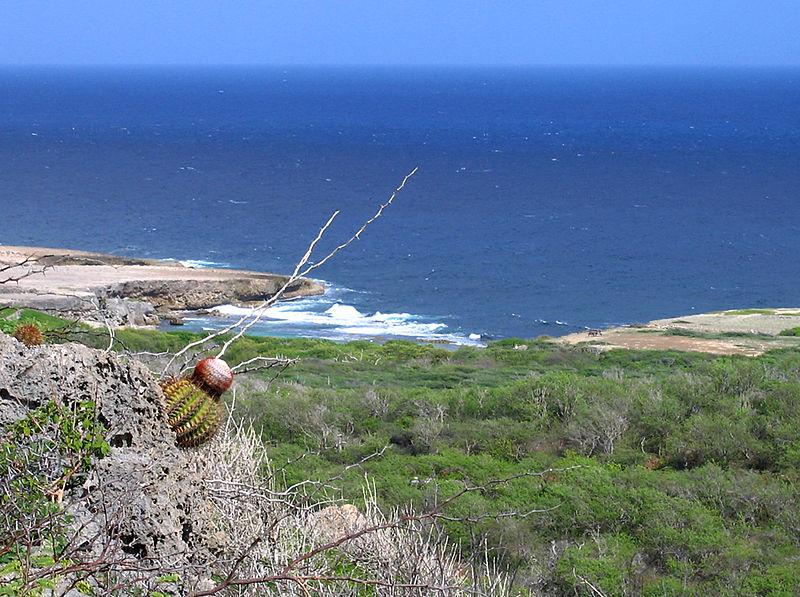 Onde curtir a natureza em Curaçao