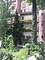 Giardino botanico di Brera (Milan) 302.jpg