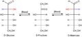 Glucose Fructose Mannose Gleichgewicht.png