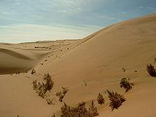 https://upload.wikimedia.org/wikipedia/commons/thumb/7/79/Gobi_Desert.jpg/220px-Gobi_Desert.jpg