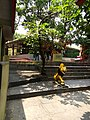 Goddess Sikharchandi Temple.jpg