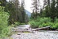 Gold Creek Alaska Lake 0286.jpg