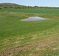 Golfpfütze - panoramio (1).jpg