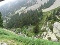 Gorges de Núria des del cremallera P1030218.JPG