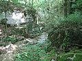Gorges de la Vingeanne 02.jpg
