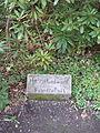 Grab von Hund Russ.JPG