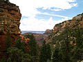 Grand Canyon. Cliff Spring trail. 08.jpg