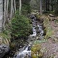 Grindelwald - panoramio (26).jpg