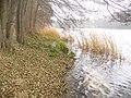 Gross Glienicker See - geo.hlipp.de - 30490.jpg