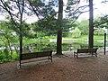 Grove Park (Natick, Massachusetts) - DSC09532.JPG