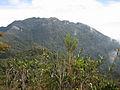 Gunung Tahan. Snapped from Gunung Tangga Lima Belas.jpg