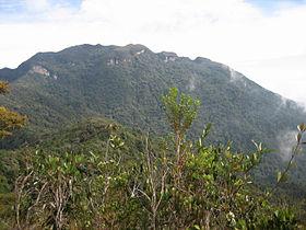 Vue depuis le Gunung Tangga Lima Belas.