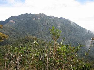 Mount Tahan - Gunung Tahan