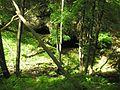 Höhleneingänge am Bach zum Bodetal - panoramio.jpg