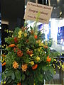 HK Admiralty mall Pacific Place 07 shop YSL flowers Aug-2012.JPG