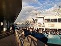 HK TST 尖沙咀 Tsim Sha Tsui 梳士巴利花園 Salisbury Garden public piers 維多利亞港 Victoria Harbour 黃昏 evening June 2020 SS2 27.jpg