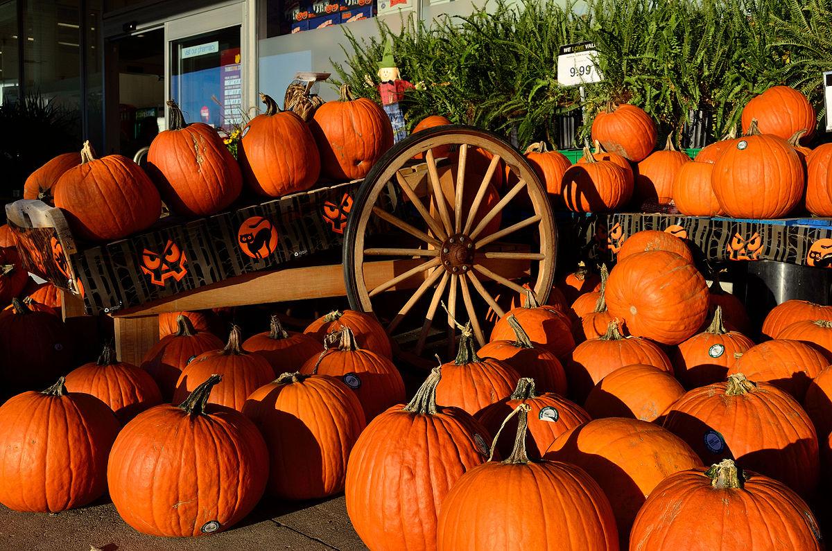 HalloweenPumpkin2.jpg
