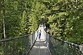 Hanging Bridge - panoramio.jpg